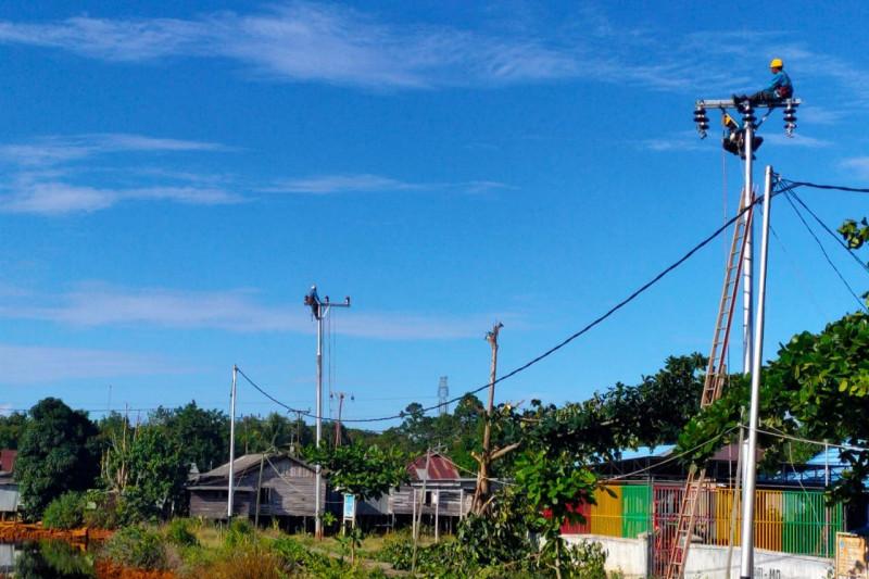 PLN suplai listrik untuk kawasan lumbung pangan di Kalimantan Tengah