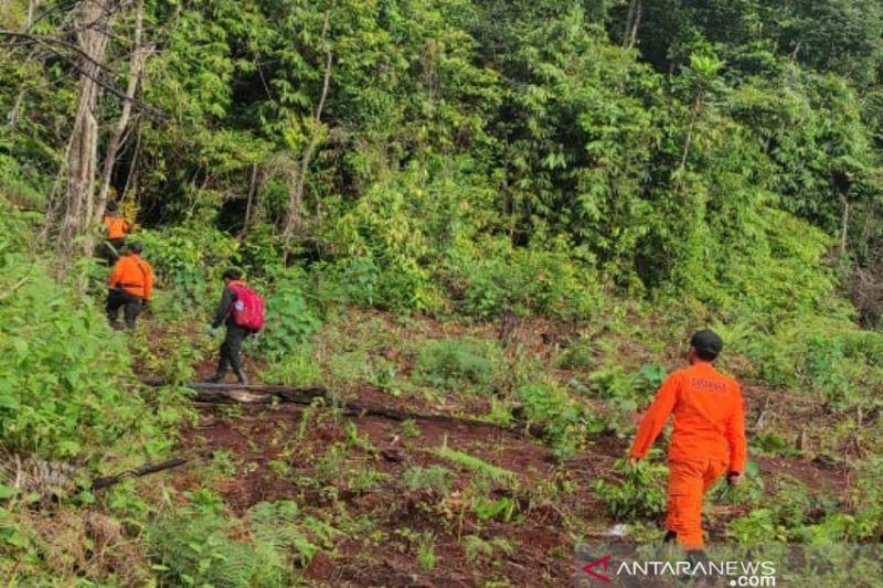 Basarnas hentikan pencarian petani hilang di hutan Mahalona Luwu Timur thumbnail