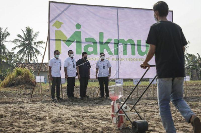 Erick Thohir perintahkan BUMN pupuk segera garap pasar nonsubsidi thumbnail