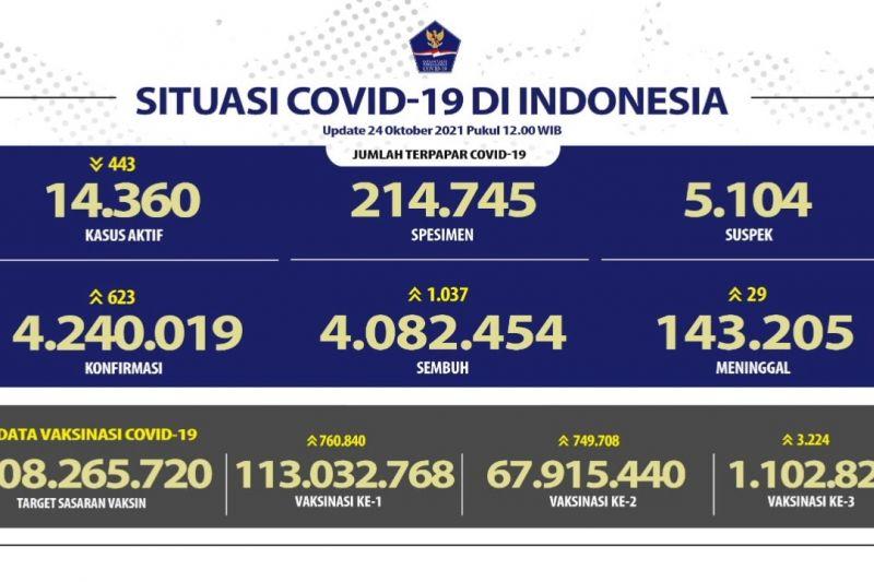 Pasien COVID-19 sembuh bertambah 1.037 pada Minggu 24 Oktober thumbnail