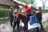 Menembus hutan belantara dengan kuda demi Pemilu 2019