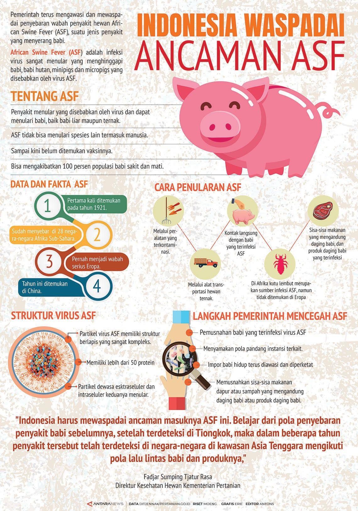 Indonesia waspadai ancaman ASF