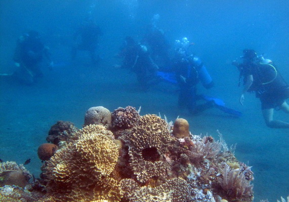 US provides US$7 million to Bunaken Sea Park