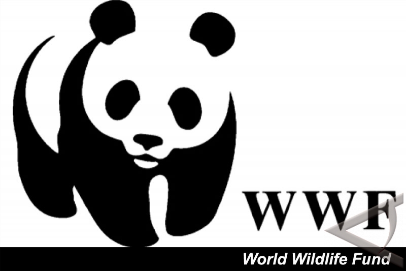 WWF, Greenpeace Indonesia save Sumatran tigers and elephants