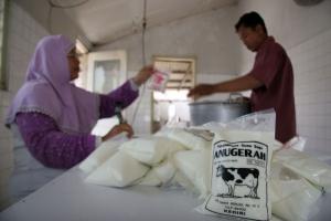 Rajin minum susu bisa raih Nobel