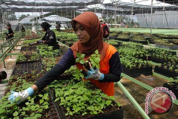 Kota Banjarbaru siapkan