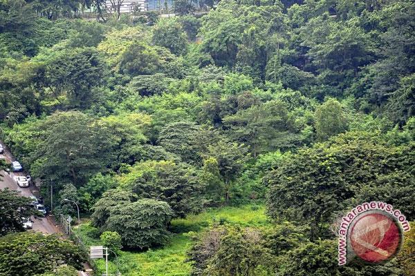 Tangsel Targetkan Setiap Kecamatan Miliki Hutan Kota