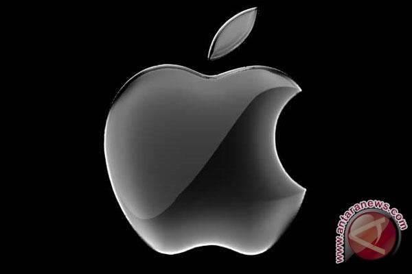 Harga iPad mini diperkirakan sekitar Rp3 juta