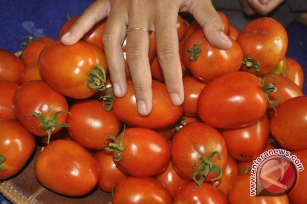 Zat pada tomat turunkan resiko stroke