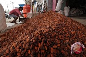 Bea keluar biji kakao tetap 5 persen