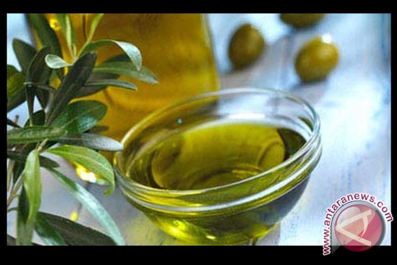 Minyak zaitun dapat memperburuk kondisi kulit kepala