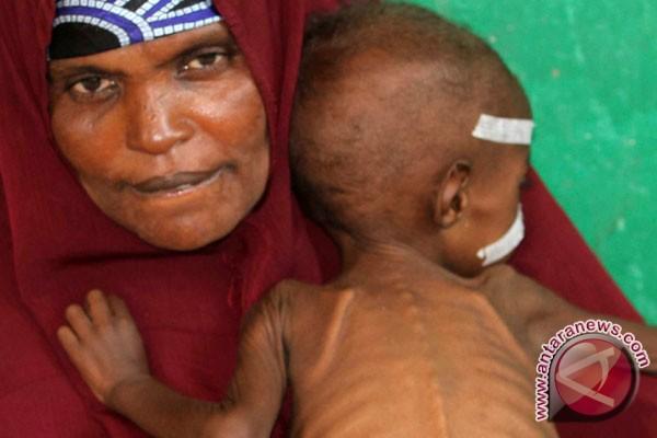 Somalia hadapi krisis pangan baru