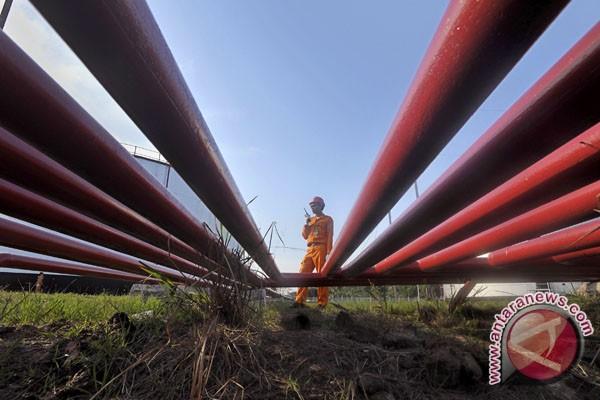 Pertamina keluhkan polisi tak tangani penjarahan minyak