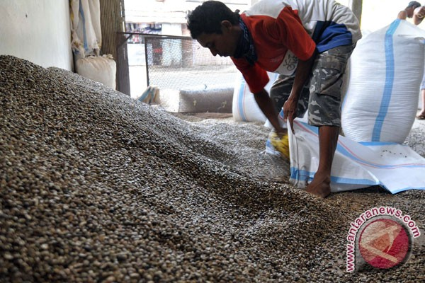 Ekspor bubuk kopi Indonesia naik tajam