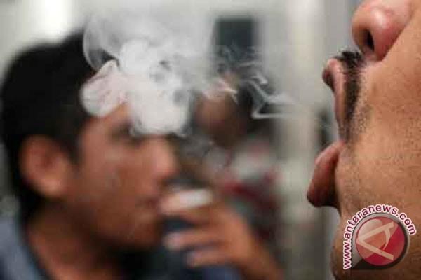 Rokok pemicu risiko delapan penyebab kematian