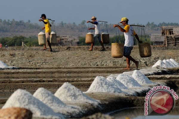 APGI protes kebijakan Kemendag terkait impor garam