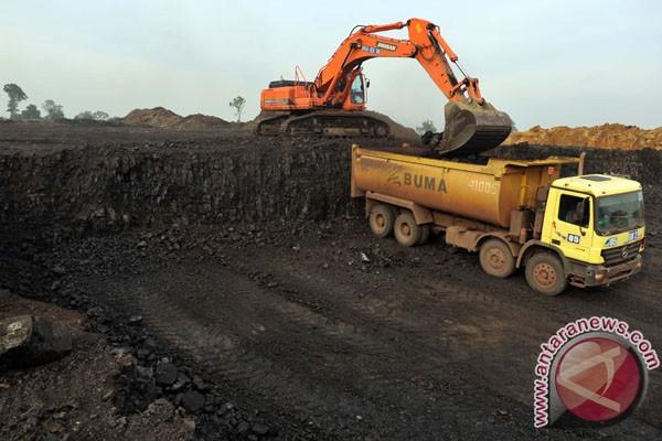 Dampak debu batu bara terasa hingga radius tiga kilometer