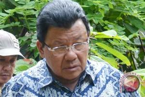 Gubernur berharap Presiden Jokowi bangun pabrik kakao di Sulbar