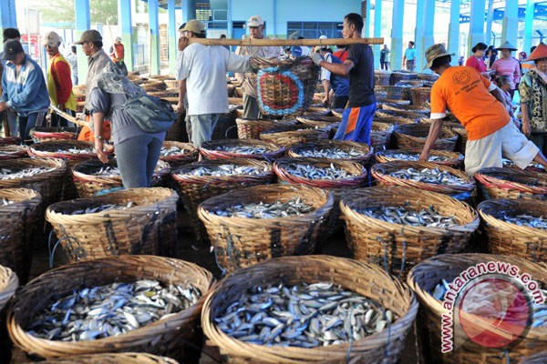 Bali`s canned fish exports up 58.35 pct