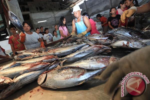 Italia tunggu koreksi produk perikanan Indonesia