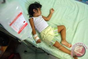 Penderita DBD di Lebak capai 230 orang