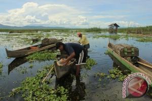 Gorontalo siapkan Danau Limboto jadi destinasi wisata 2015