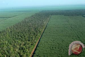 Perusahaan dukung perlindungan satu juta hektar lahan