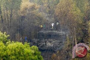 Pendaki sempat terjebak akibat kebakaran hutan Guntur