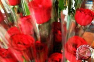 Kaum muda buru bunga Valentine