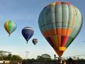 Sejumlah balon udara mengudara di kawasan Sentul City pada Festival Balon Udara Internasional di Sentul, Bogor, Jabar, Sabtu (24/3). Meski sempat tertunda selama dua hari akibat faktor angin, festival balon udara internasional yang diikuti 12 negara tersebut dapat berlangsung dan puluhan balon udara mengudara menghiasi langit Bogor. (FOTO ANTARA/Jafkhairi).
