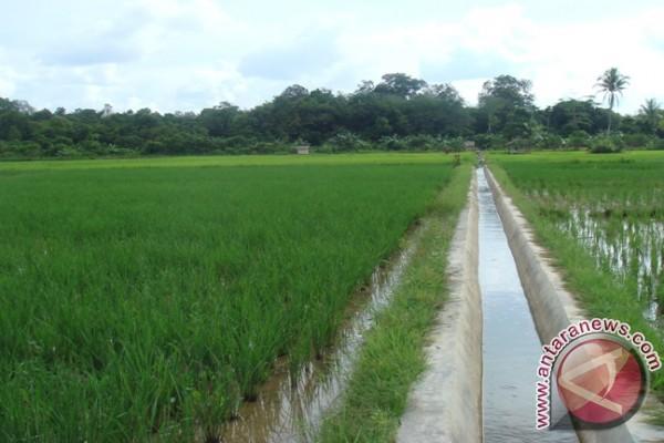 Teknologi Beyonic tingkatkan produksi pertanian