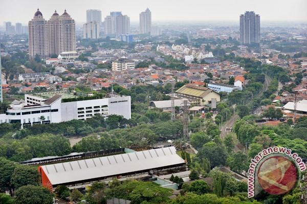 Potensi ruang terbuka hijau Jakarta 23 persen