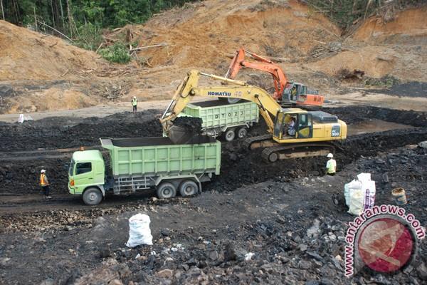 Pemerintah diminta tinjau royalti batubara