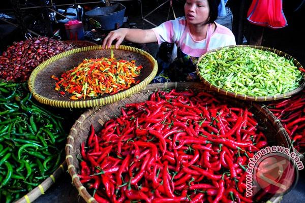Harga pangan meningkat tajam harganya .....
