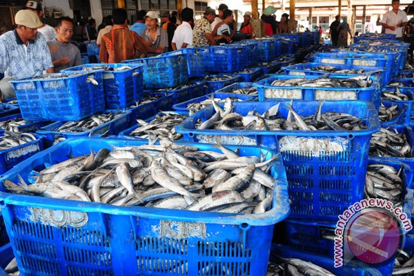 Bontang has potential to produce one million tons of fish per year