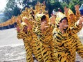 Ratusan aktivis pecinta lingkungan Greenpeace menggunakan kostum bercorak harimau ketika menggelar aksi di depan Gedung Kemenhut, Jakarta, Rabu (18/4). Aksi tersebut untuk memberikan dukungan kepada Kemenhut agar menindaklanjuti laporan investigasi Greenpeace mengenai skandal ditemukannya kayu ramin di pabrik pulp dan kertas di Perawang. (FOTO ANTARA/Dhoni Setiawan)