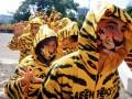Ratusan aktivis pecinta lingkungan Greenpeace menggunakan kostum bercorak harimau ketika menggelar aksi di depan Gedung Kemenhut, Jakarta, Rabu (18/4). Aksi tersebut untuk memberikan dukungan kepada Kemenhut agar menindaklanjuti laporan investigasi Greenpeace mengenai skandal ditemukannya kayu ramin di pabrik pulp dan kertas di Perawang. (FOTO ANTARA/Dhoni Setiawan).