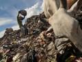 Seorang pemulung mencari sampah plastik dan barang bekas lainnya di dekat hewan ternak yang mencari makan di Tempat Pembuangan Akhir (TPA) Antang, Makassar, Sulsel, Jumat (20/4). TPA tersebut selain menjadi sumber ekonomi para pemulung, juga dijadikan lahan penggembalaan ternak sapi pedaging. (FOTO ANTARA/Zabur Karurur)