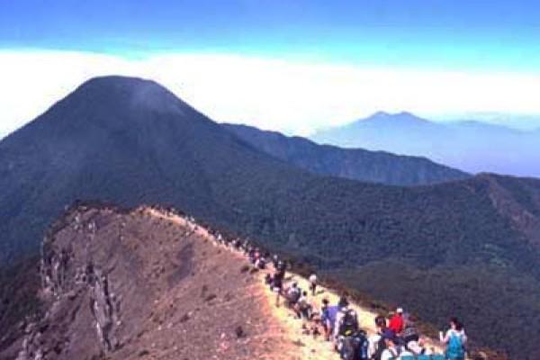 Korban Gunung Gede Kegiatan Pendakian Gunung Gede