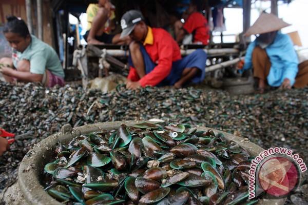 Hati-hati makan seafood Teluk Jakarta