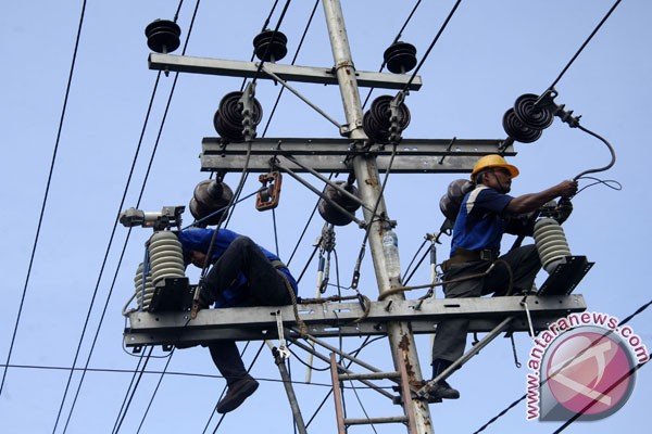 PLN urged to accelerate 10,000 MW power project