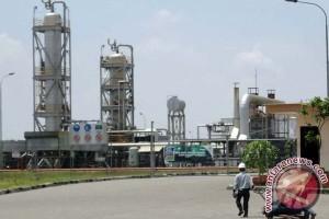 Produksi minyak Blok Cepu 185 ribu barel per hari