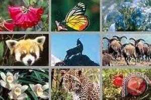 IPB usulkan pemetaan keanekaragaman hayati Indonesia