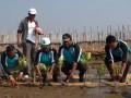 Menteri Lingkungan Hidup, Balthasar Kambuaya (2 kanan) beserta Istri Yuliana Kambuaya (2 kiri) menanam pohon mangrove di kampung Garapan, RT.05/06, Tangjung pasir, Teluknaga, Kabupaten Tangerang, Banten, Rabu (27/6). Penanaman pohon mangrove itu bagian dari progam Rantai Emas kementrian Lingkungan hidup yang diharapkan bisa memulihkan kualitas lingkungan pesisir sekaligus memperbaiki perekonomian warga setempat. (FOTO ANTARA/Lucky.R)
