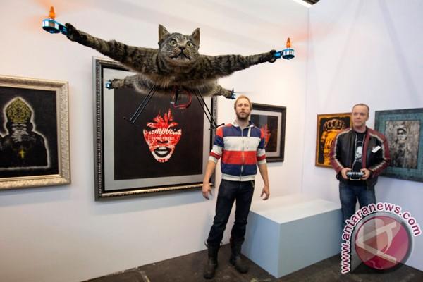 Lucunya Orville si kucing helikopter