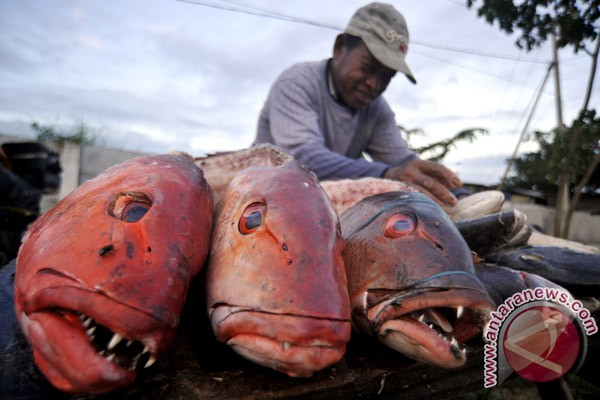Ministry hails WWF`s guidelines for sustainable fisheries
