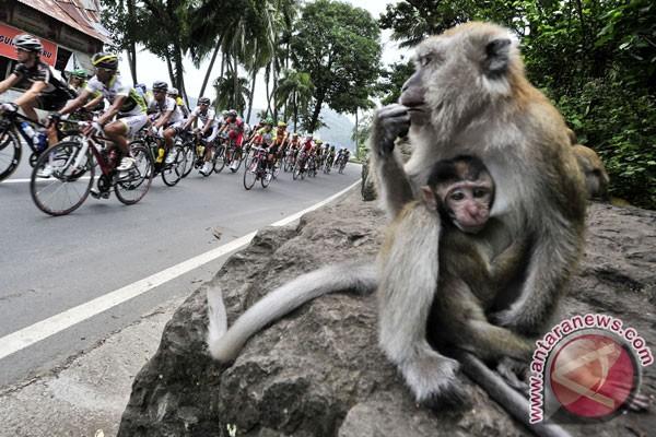 Putra Perjuangan, tim terbaik Tour de Singkarak