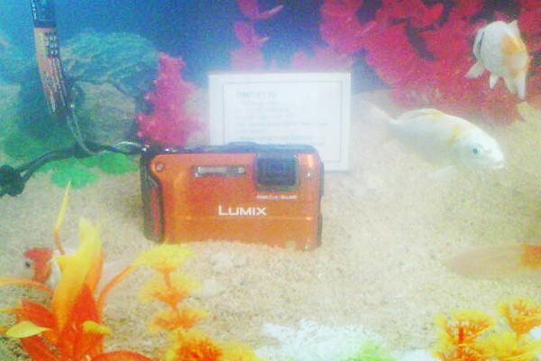 Panasonic luncurkan kamera anti-air hingga 20 m