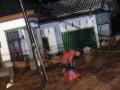 Seorang anggota tim SAR melintasi banjir di Kelurahan Limaumanis, Kecamatan Pauh, Padang, Sumbar, Selasa (24/7) malam. Banjir bandang di sekitar bantaran Sungai Limaumanis dan Batangkuranji tersebut membawa material kayu yang mengakibatkan puluhan rumah rusak. (ANTARA/Iggoy el Fitra)