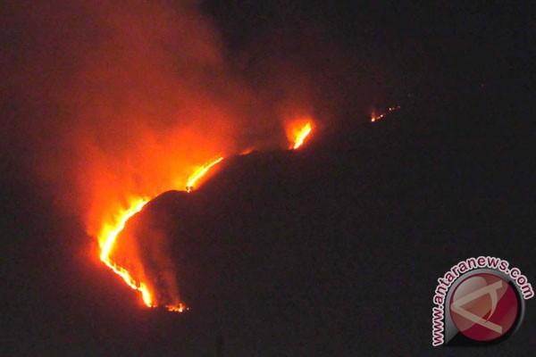 Pemerintah antisipasi kebakaran hutan dengan TMC